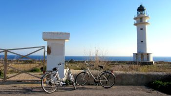 Bicycle hire in Formentera