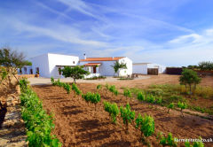 CASA CALMA - 4 Bedroom Agrotourism-style Villa, with BREAKFAST & DAILY CLEANING